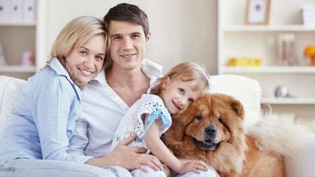 Wills & Trusts dog-young-family Direct Wills Crawley